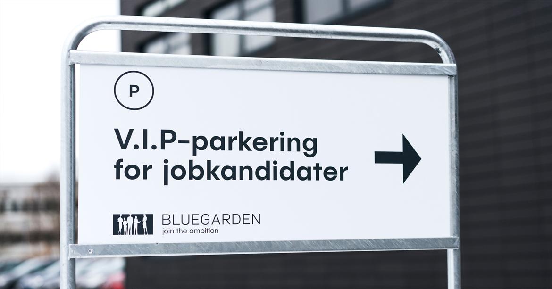 Bluegarden-employer-branding-13