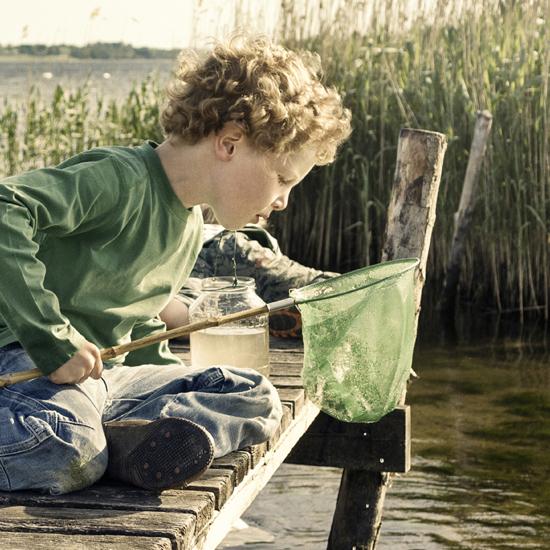 Danmarks Grønne Investeringsfond